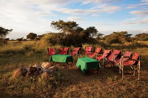 야생탐험 3탄, 케냐 나이로비