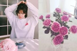 스타 인테리어 '송혜교'