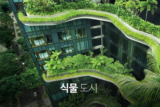 식물 도시