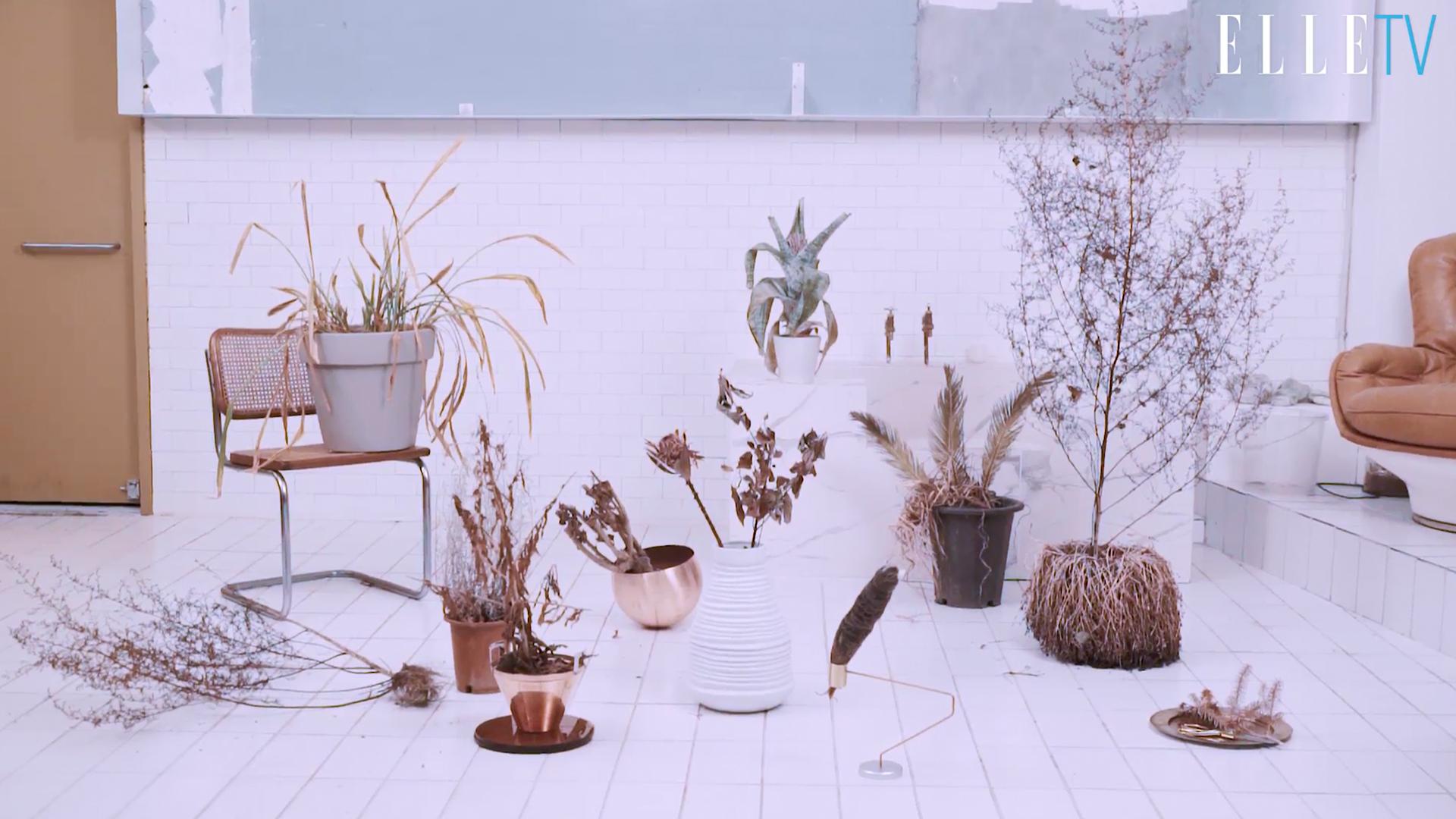 말라비틀어진 식물을 쓰레기통에 버렸다면 보물을 버린 셈이다. 금빛 오브제들과 만나 고급스러운 데코 아이템으로 다시 태어난 드라이 식물들