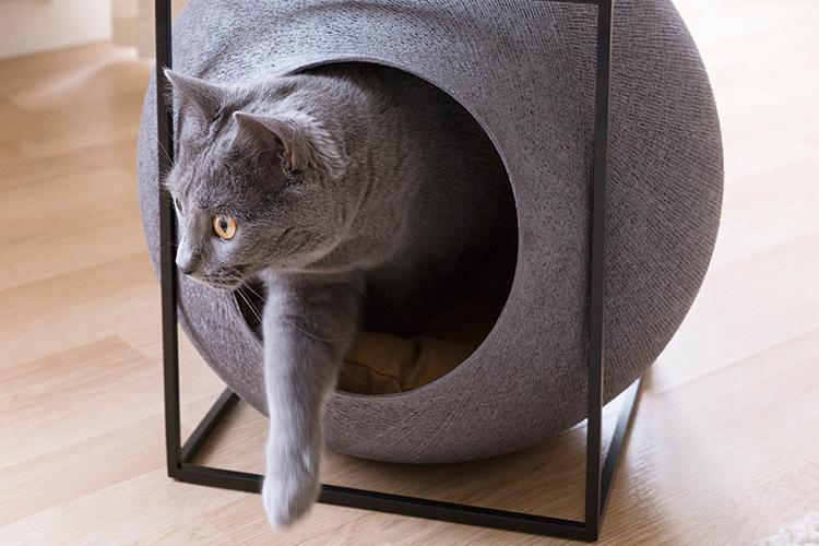 애완동물에게도 스타일 좋은 집에서 살 권리가 있다. 반려묘를 키우는 '집사'들의 마음을 사로잡은 고양이 가구 브랜드 '미유파리'의 설립자 오드 산체스와 그녀의 뮤즈를 만났다::고앙이,반려묘,미유파리,펫,엘르,elle.co.kr::